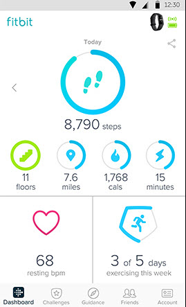 Screenshot of one of FitBit's in-app dashboard